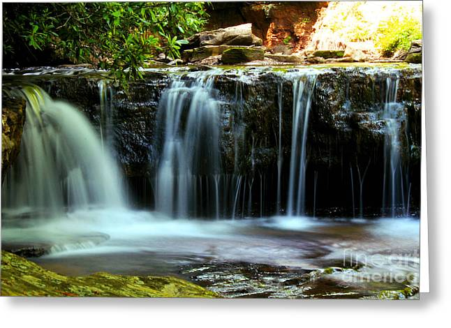Stream Framed Prints Greeting Cards - Cool Spring Greeting Card by Melissa Petrey