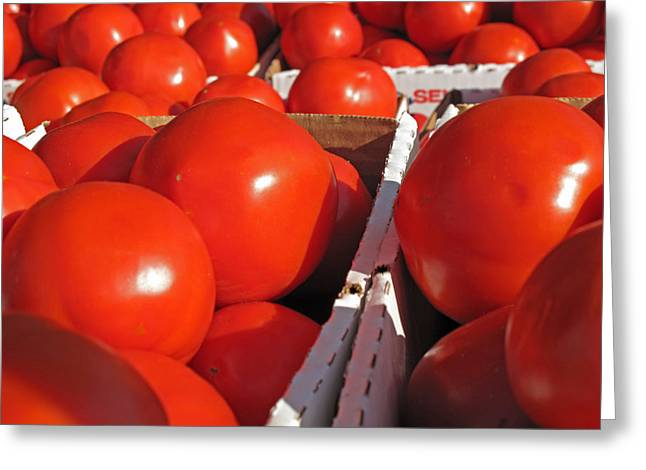 Cool Tomatoes Greeting Card by Barbara McDevitt