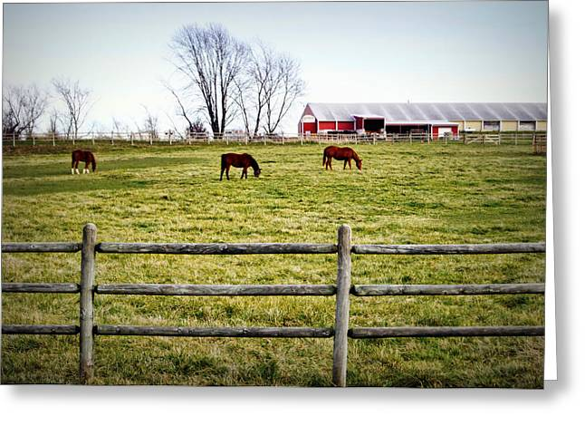 Mo Ranch Greeting Cards - Cool Weather Graze Greeting Card by Cricket Hackmann