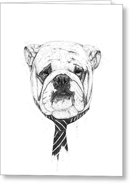 Black And White Drawings Greeting Cards - Cooldog Greeting Card by Balazs Solti