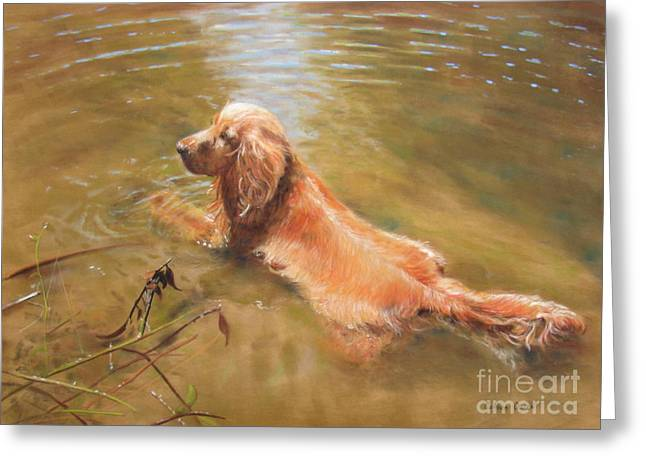 Cooling Off Greeting Cards - Cooling Off Greeting Card by Colleen Quinn