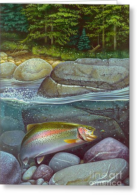 Rainbow Trout Greeting Cards - Coolwaters Rainbow Trout Greeting Card by Jon Q Wright