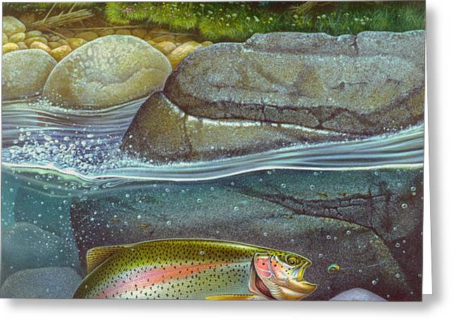 Coolwaters Rainbow Trout Greeting Card by Jon Q Wright