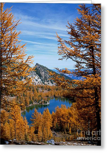 Okanogan National Forest Greeting Cards - Cooney Lake And Martin Peak Greeting Card by Tracy Knauer