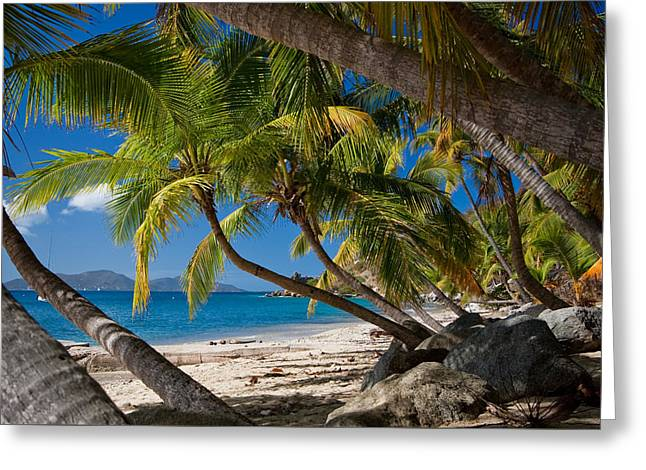 Interior Design Photo Greeting Cards - Cooper Island Greeting Card by Adam Romanowicz