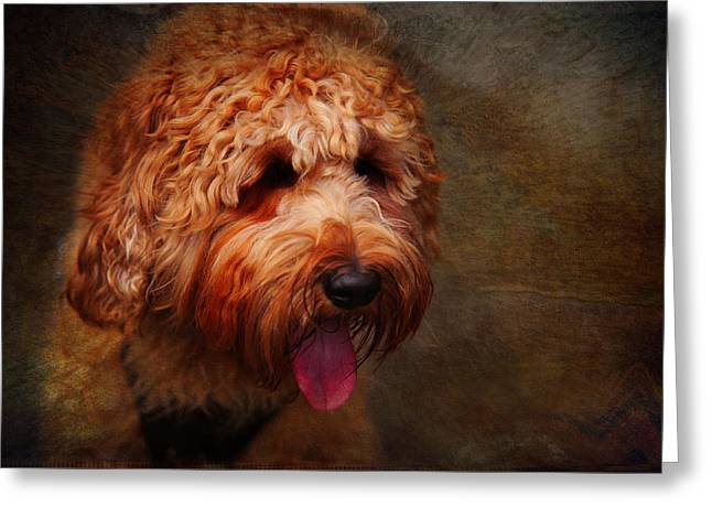 Cooper Greeting Card by Jenny Rainbow