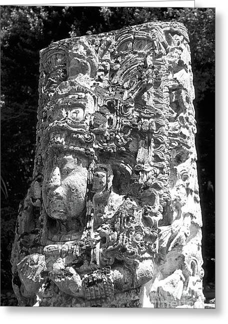 Central Stele Greeting Cards - COPAN STELA Honduras Greeting Card by John  Mitchell