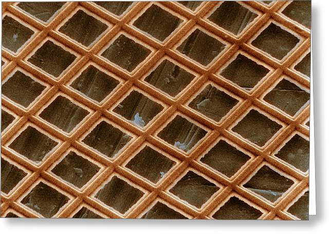 Copper Electron Micrograph Grid Greeting Card by David M. Phillips