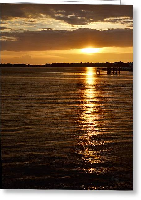 Cedar Key Greeting Cards - Copper Sunset Greeting Card by RoyD Erickson