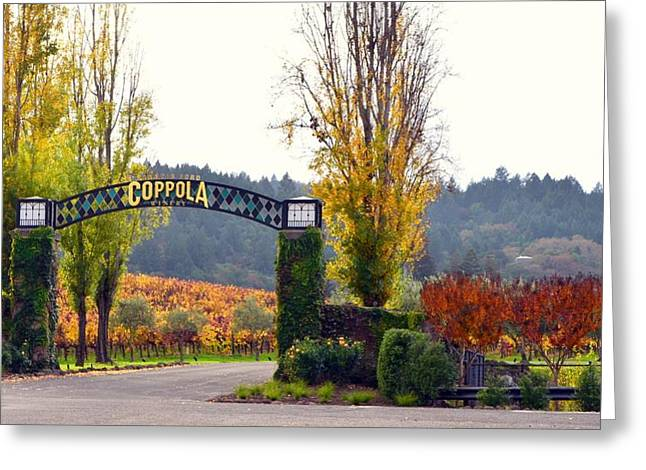 Asti Vineyards Greeting Cards - Coppola Winery SOLD Greeting Card by Antonia Citrino