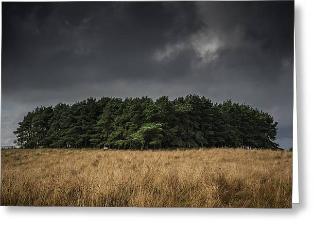 Dark Clouds. Greeting Cards - Copse Greeting Card by Chris Fletcher