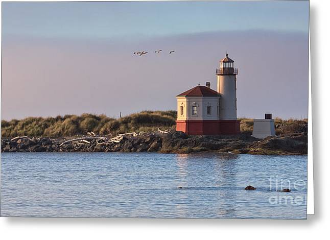 Cole Greeting Cards - Coquille River Lighthouse Greeting Card by Carrie Cole