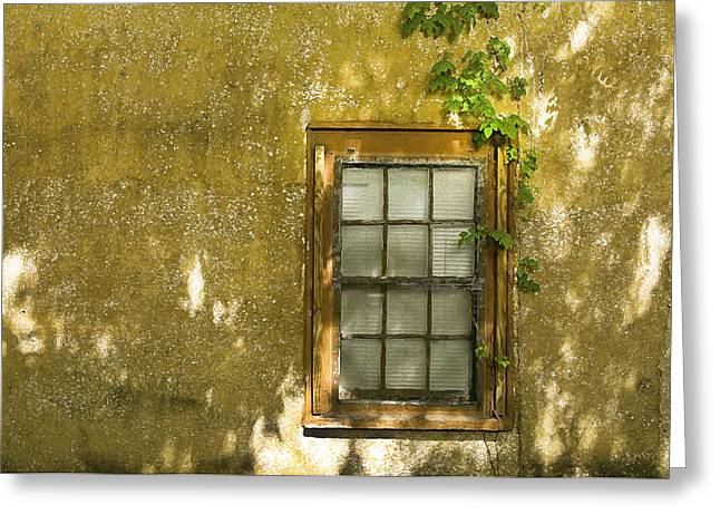 Florida House Greeting Cards - Coquina Wall and Window Greeting Card by Rich Franco