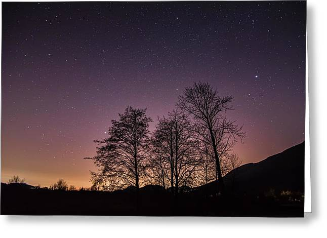 Peaceful Scene Greeting Cards - Coquitlam Light Pollution Greeting Card by James Wheeler
