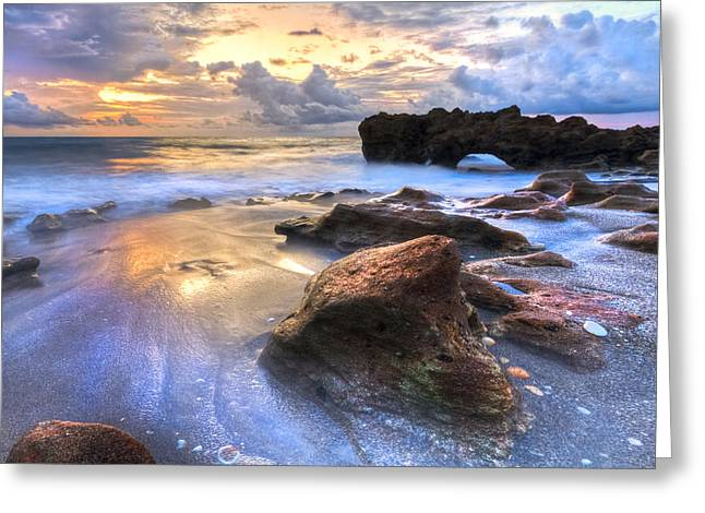 Oceanscape Greeting Cards - Coral Garden Greeting Card by Debra and Dave Vanderlaan