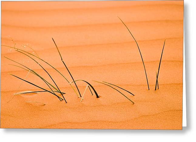 Coral Pink Sands 1 Greeting Card by Adam Romanowicz