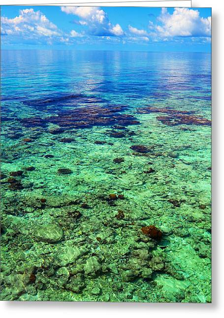 Jenny Rainbow Photographs Greeting Cards - Coral Reef Near the Island at Peaceful Day. Maldives Greeting Card by Jenny Rainbow