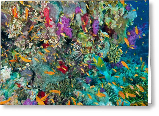 Undersea Photography Greeting Cards - Coral Reef 2 Greeting Card by Roy Pedersen