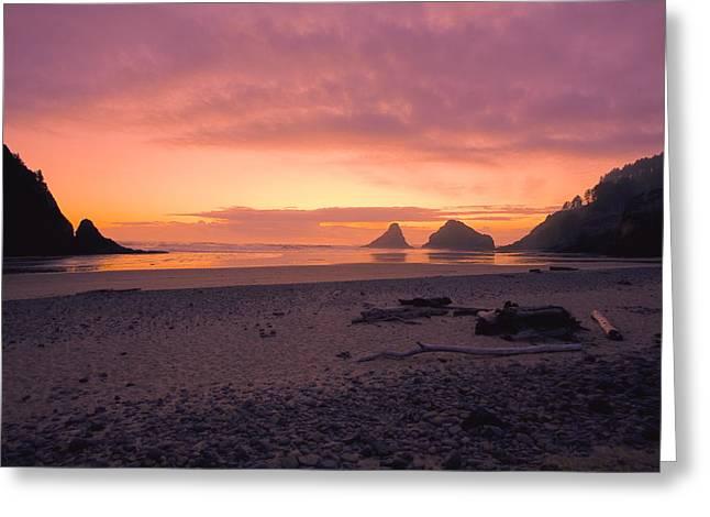 Heceta Greeting Cards - Coral Sunset at Heceta Head Greeting Card by Bonnie Bruno