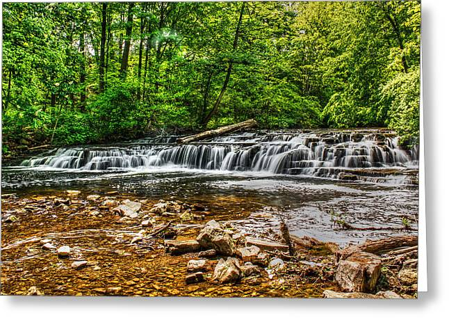 Glen Creek Greeting Cards - Corbetts Glen Waters Greeting Card by Tim Buisman