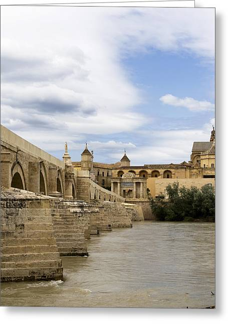 Southern Province Greeting Cards - Cordoba From The Roman Bridge Greeting Card by Lorraine Devon Wilke