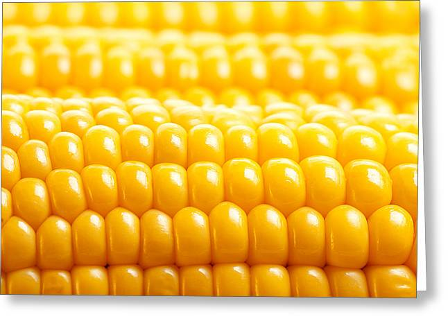 Sweet Corn Farm Greeting Cards - Corn background Greeting Card by Anna Omelchenko