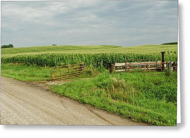Corn Clouds Sun Rusty Gate Greeting Card by Wilma  Birdwell