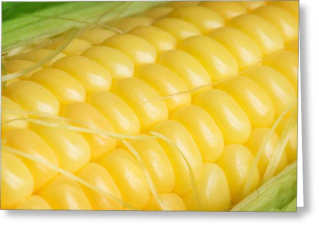 Cereal Digital Art Greeting Cards - Corn cob Greeting Card by Modern Art Prints