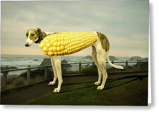 Surreal Humor Greeting Cards - Corn Dog Greeting Card by Chip Simons