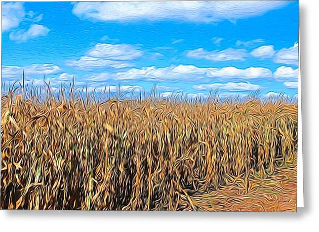 Corn Field Greeting Card by Bob Northway