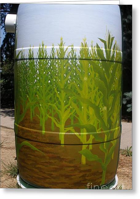Rain Barrel Paintings Greeting Cards - Corn Field Greeting Card by Katherine Tesch