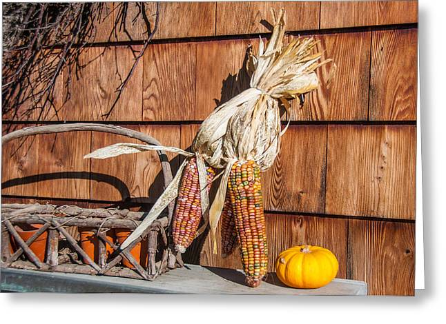 Maine Farmhouse Greeting Cards - Corn Greeting Card by Guy Whiteley