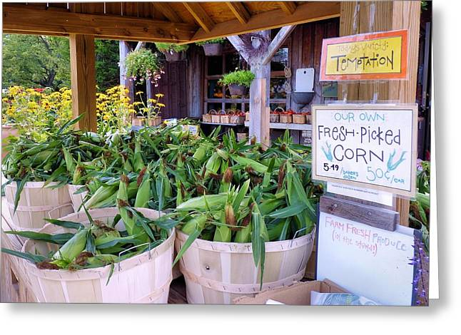 Farmstand Greeting Cards - Corn Greeting Card by Janice Drew