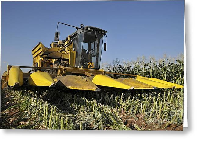Corn Picker Greeting Cards - Corn Picker In A Field Greeting Card by Photostock-israel