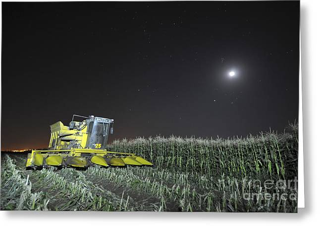 Harvest Time Greeting Cards - Corn picker in a field Greeting Card by Shay Levy