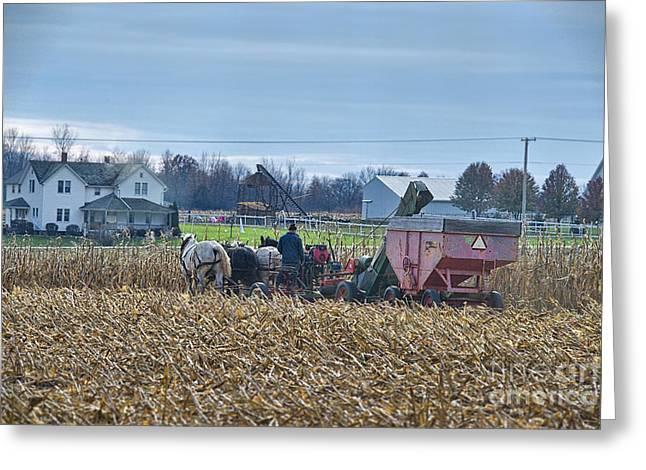 Corn Picker Greeting Cards - Corn Picker Nov 2013 Color Greeting Card by David Arment