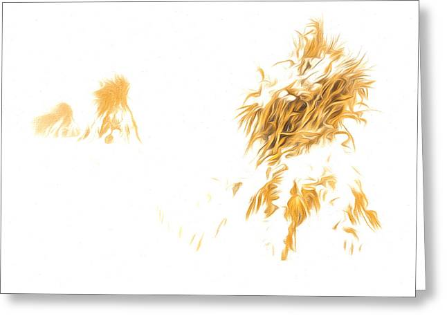 Western New York Greeting Cards - Corn Shocks in a winter field - Artistic Greeting Card by Chris Bordeleau