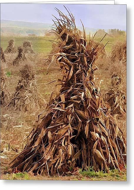 Corn Stalk Bales Greeting Card by Marcia Colelli