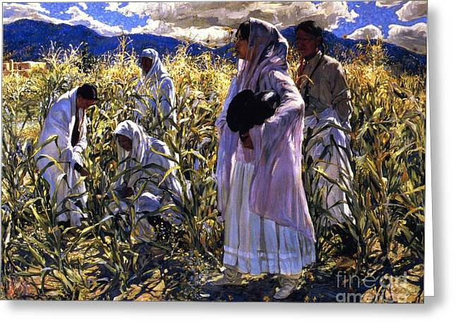Cornfield Paintings Greeting Cards - Cornfield In Taos Greeting Card by Pg Reproductions