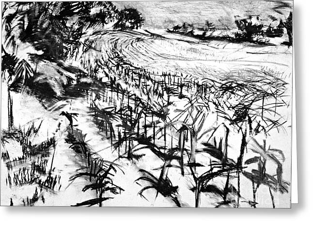 Cornfield Drawings Greeting Cards - Cornfield Greeting Card by John Castell