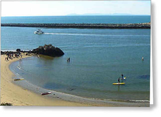 Gregory Dyer Greeting Cards - Corona del Mar State Beach Greeting Card by Gregory Dyer