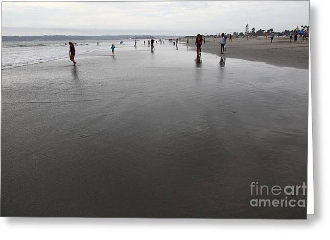 Coronado Island Greeting Cards - Coronado Beach In Coronado California 5D24298 Greeting Card by Wingsdomain Art and Photography