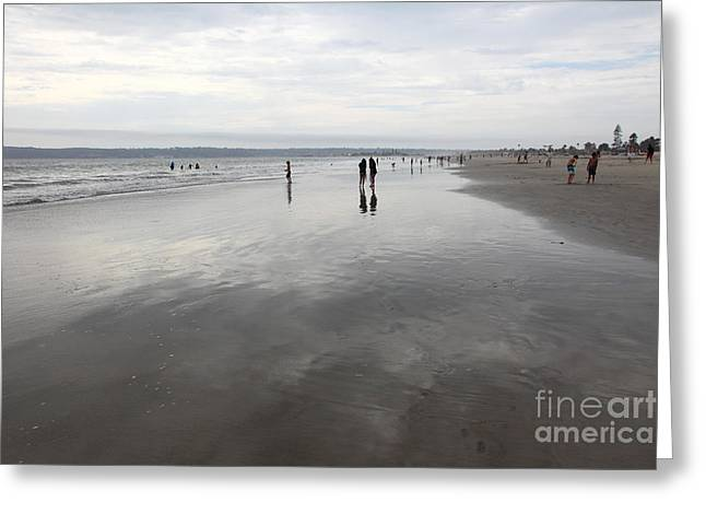 Coronado Island Greeting Cards - Coronado Beach In Coronado California 5D24300 Greeting Card by Wingsdomain Art and Photography
