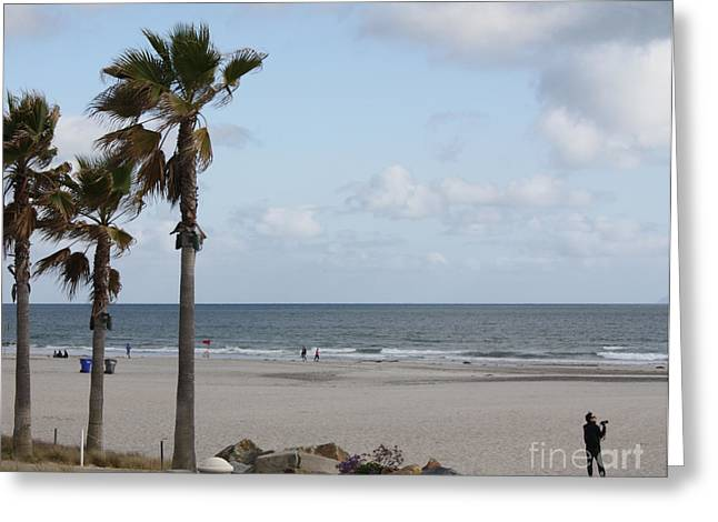 California Ocean Photography Greeting Cards - Coronado Beach in San Diego Greeting Card by John Telfer