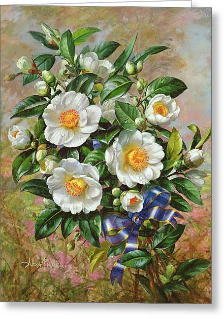 Coronation Camelia From The Golden Jubilee Series Greeting Card by Albert Williams