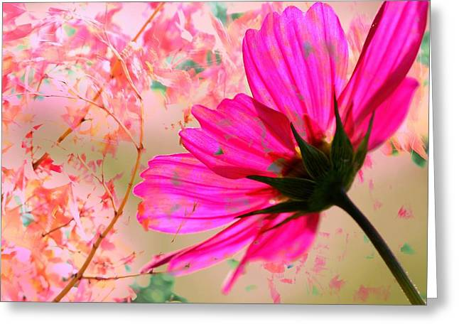 Recently Sold -  - Beige Abstract Greeting Cards - Cosmos Meets Autumn Abstract Greeting Card by Karen Jensen