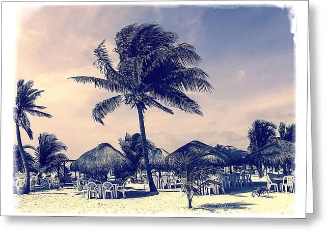Costa Digital Greeting Cards - Costa Maya Beach Day Greeting Card by Julie Palencia