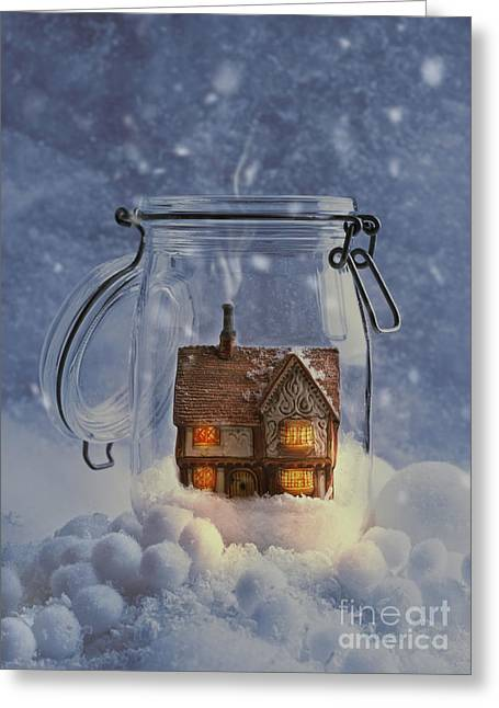 Snowy Evening Greeting Cards - Cosy Home Greeting Card by Amanda And Christopher Elwell