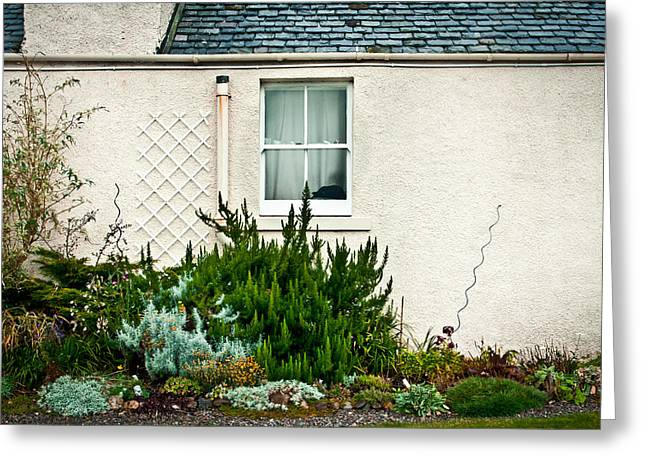 Turf Greeting Cards - Cottage garden Greeting Card by Tom Gowanlock