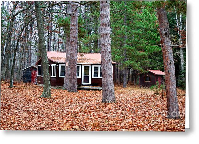 Pioneer Homes Digital Greeting Cards - Cottage In Woods Greeting Card by Ms Judi